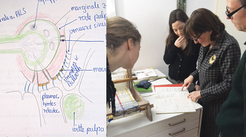 arttechne-histology-drawing